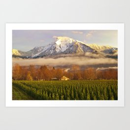 Mt. Cheam Art Print