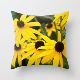 Sunny Blackeyed Susan Throw Pillow