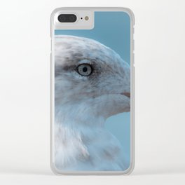 Shorebird in close-up Clear iPhone Case