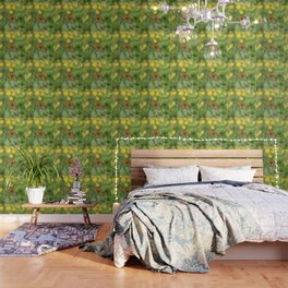 Small pearl-bordered fritillary and buttercups Wallpaper