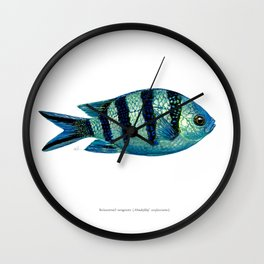 Scissortail Sergeant Wall Clock