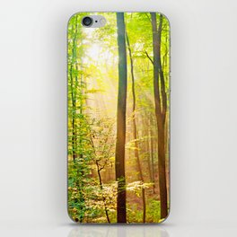 Sunbeams in the forest iPhone Skin