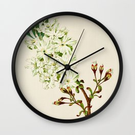Gyoi-ko or Robe Yellow Cherry Blossoms Wall Clock
