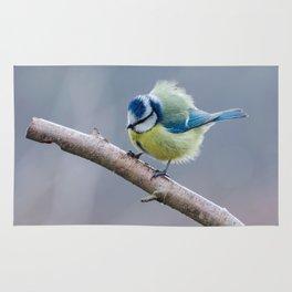 Ruffled feathers Rug