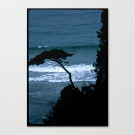 seapine Canvas Print