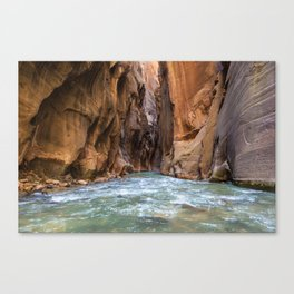 Swept Away (The Narrows, Zion National Park, Utah) Canvas Print