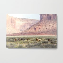 Wild Horses in Monument Valley USA Metal Print