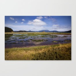 Marsh, Lopez Island, WA Canvas Print