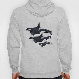Orca (Orcinus orca) Hoody