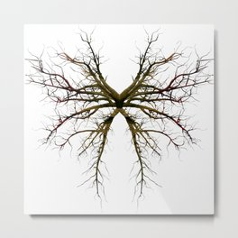 The Roots of Colour (No BG) Metal Print