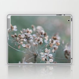 Withered Laptop & iPad Skin