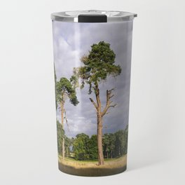 Evening light on Scots Pine trees (Pinus sylvestris). Norfolk, UK Travel Mug