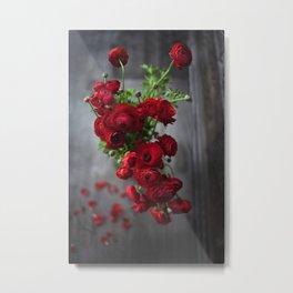 Red, Red Ranunculus Metal Print
