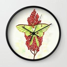 Luna Moth On Sumac Wall Clock