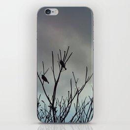 Under Grey Skies iPhone Skin