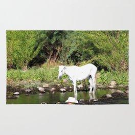 Fishing for Horses? Rug