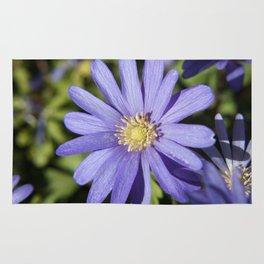 European Daisy Photography Print Rug