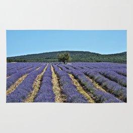 Lavender field, Provence, France Rug