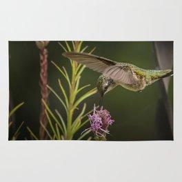 Hummingbird and deck flowers Rug