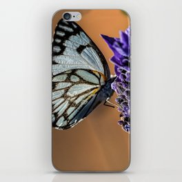 Caper White Butterfly iPhone Skin