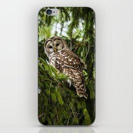 Barred Owl iPhone Skin