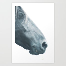 Horse head - fine art print n° 2, nature love, animal lovers, wall decoration, interior design, home Art Print