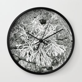 Beautiful coralline algae Wall Clock