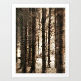 Thru the Forest Art Print