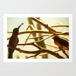 Bird Treats Art Print