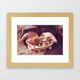 see shells Framed Art Print