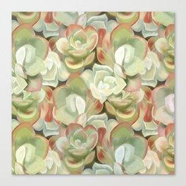 Sedum Garden Canvas Print