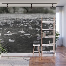 Black and White Flower Petals on Pavement Road Photograph Wall Mural