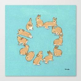 12 rabbits Canvas Print