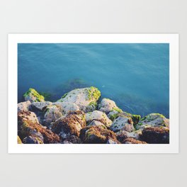 Shore rocks Art Print
