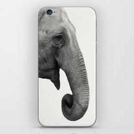 Elephant Animal Photography iPhone Skin