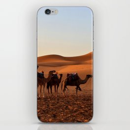 Group of Camels Resting iPhone Skin