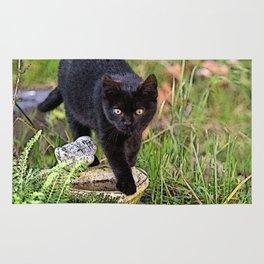Lovely black cat walking her garden Rug