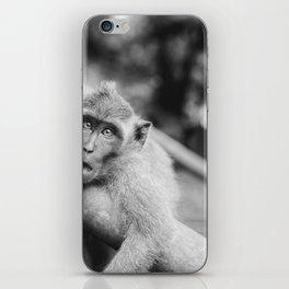 Cute Monkey (Black and White) iPhone Skin