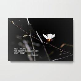 Sakura flowers on black 03 Metal Print