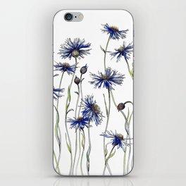 Blue Cornflowers, Illustration iPhone Skin