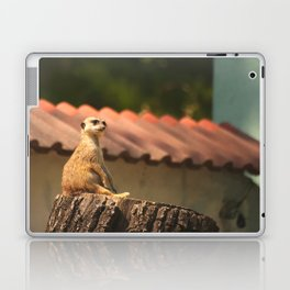 Meerkat Funny Observer #decor #society6 Laptop & iPad Skin