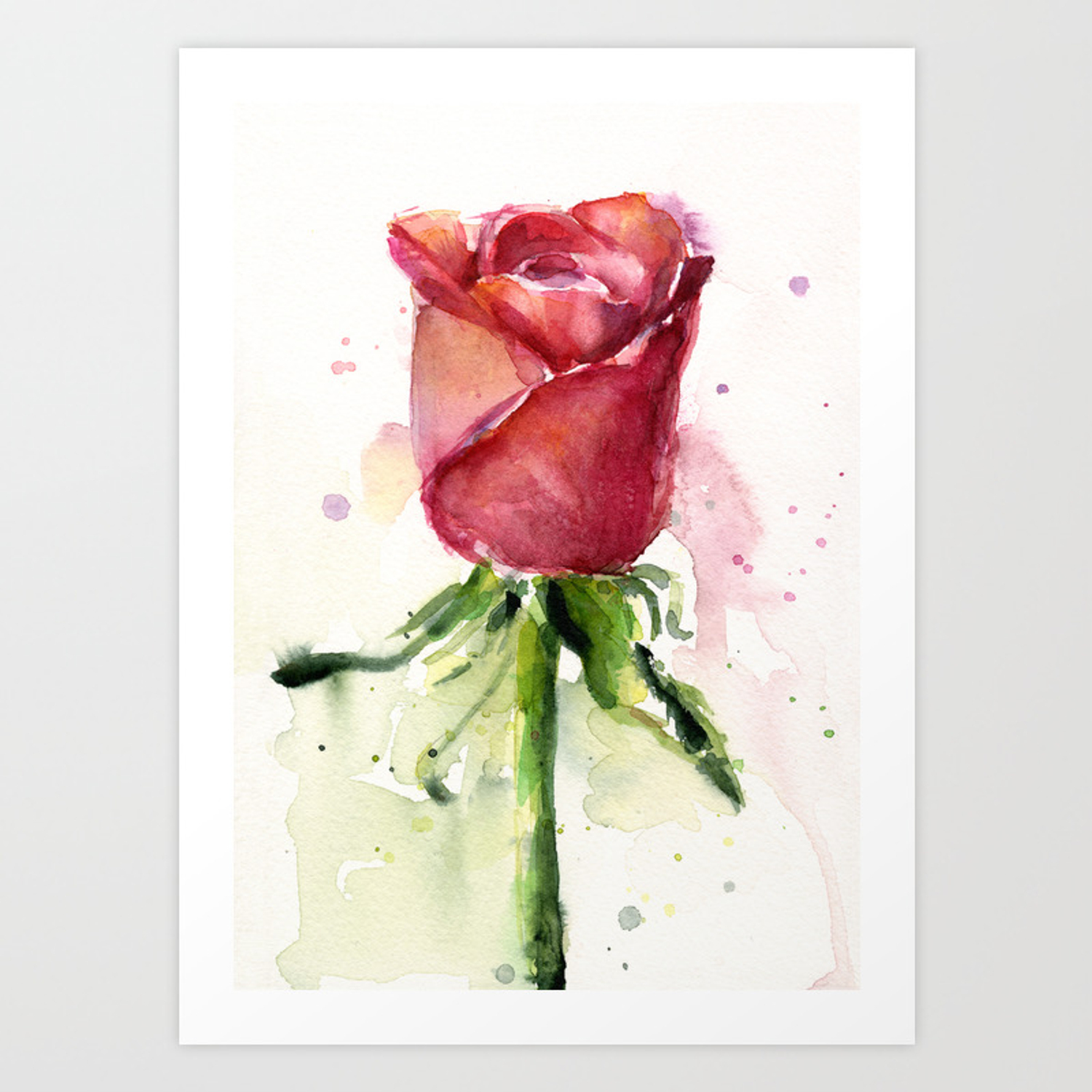 Rose Watercolor Red Flower Painting Floral Flowers Art Print By