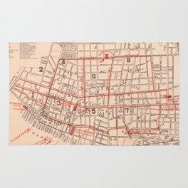 Vintage Map of Charleston South Carolina (1890) Rug