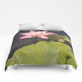 Pink Lotus by Teresa Thompson Comforters