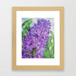 Hyacinth Framed Art Print