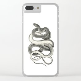 snake vintage style print serpent black and white 1800's Clear iPhone Case