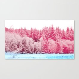 Candy pine trees Canvas Print