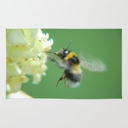 Busy Little Bee - Garden Photography by Fluid Nature Rug
