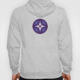 Pre-Conceived Hoody