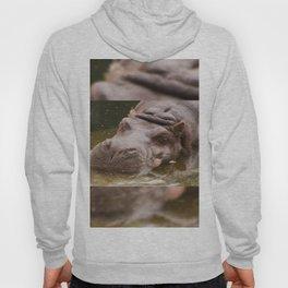 Huge bored Hippopotamus Hoody